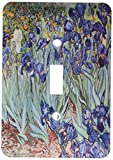 3dRose lsp_46958_1 Van Gogh Irises Iris, Flower, Flowersanniversary, Wedding Anniversary, 25Th Anniversary, Faith Light Switch Cover