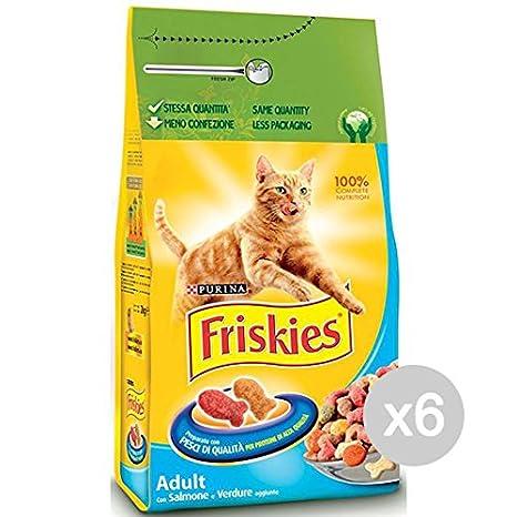 Friskies Juego 6 Gato Croccantini kg 2 Salmón Verduras Comida para Gatos: Amazon.es: Productos para mascotas