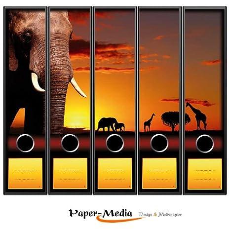 Paper-Media - Juego de 5 archivadores (DIN A4, 65 x 300 mm), diseño de la Savana: Amazon.es: Oficina y papelería