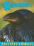 Ravens, Christine Webster, 1605960837