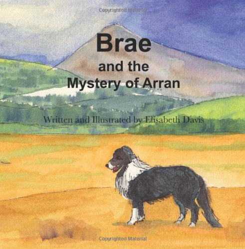 Brae and the Mystery of Arran PDF