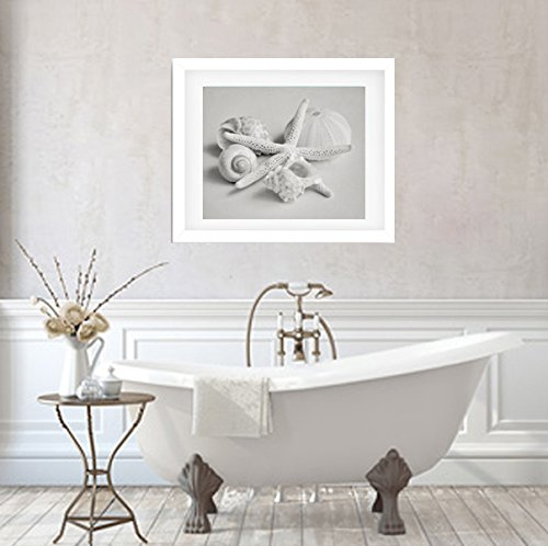 Seashell Decor, Shell Photographic Print, Black and White Photography, Beach Decor, Pale Grey Picture, Beach Bathroom Wall Art, Coastal Decor from 5x7 to 24x30