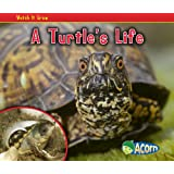 A Turtle's Life (Watch It Grow)