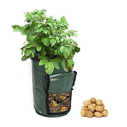 Amazon.com: Maceta de bolsa de 2 piezas para vegetales ...
