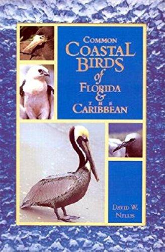 (Common Coastal Birds of Florida & the)