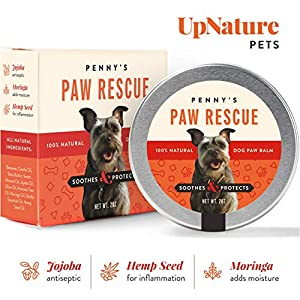 Penny's Paw Rescue – 100% Natural Dog Paw Balm – Relief from Heat, Cold, Allergens & Rough Terrain – Dog Paw Protection, Healing & Paw Soother – Paw Wax for Dogs Made with Hemp Oil, Jojoba, Moringa