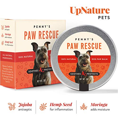 Pennys Paw Rescue - 100% Natural Dog Paw Balm - Relief from Heat, Cold, Allergens & Rough Terrain - Dog Paw Protection, Healing & Paw Soother - Paw Wax for Dogs Made with Hemp Oil, Jojoba, Moringa