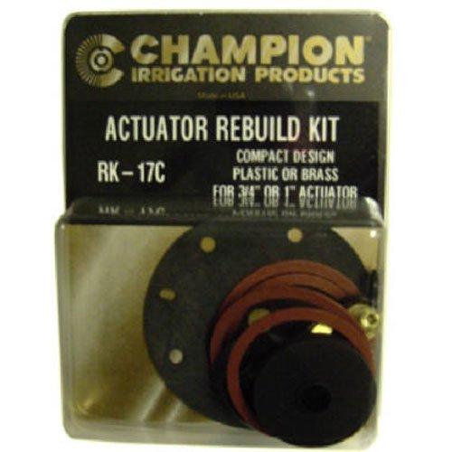 CHAMPION IRRIGATION RK 17C Actuator Rebuild product image