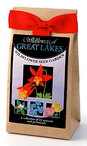 Great Lakes Wildflowers - Seed Mix - a Beautiful Collection of Twelve annuals & perennials - Enjoy The Natural Beauty of Great Lakes Flowers in Your own Home Garden