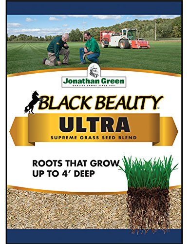 Jonathan Green 10323 Black Beauty Ultra Mixture, 25-Pound (Best Grass Seed To Plant In Winter)