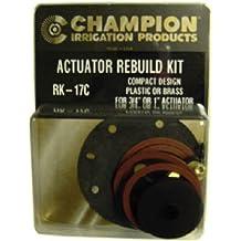 CHAMPION IRRIGATION PD RK-17C Actuator Rebuild Kit
