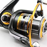 Wild.life® Fishing Reels Spinning Freshwater Saltwater with 11BB Gear Ratio Metal Body Left/right Interchangeable Collapsible Handle Spinning Fishing Reel 3000D