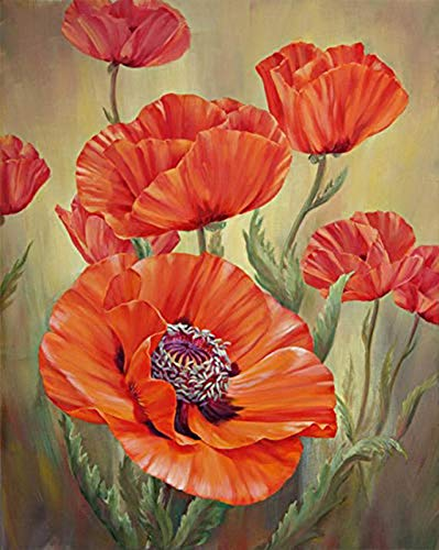 TINMI ARTS 5D Diamond Painting Poppy Flower Full Round Kits for Adults Mosaic Cross Stitch Kits Crystal Embroidery Kits Home Wall Décor[12