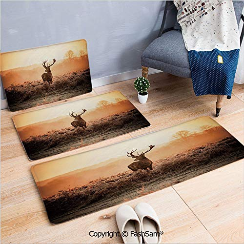 3 Piece Fashion Flannel Door Mat Carpet Red Deer in The Morning Sun Wild Nature Scenery Countryside Rural Heathers Decorative for Door Rugs Living Room(W15.7xL23.6 by W19.6xL31.5 by W19.6xL59)
