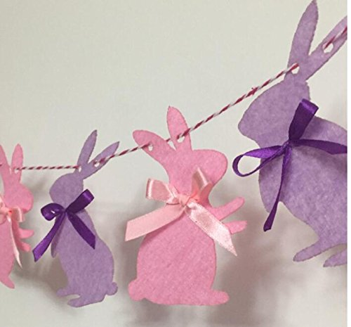 Bunny Rabbit Birthday Banner Decorations Party Supplies for Girls (Bunny Balloon)