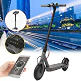 Freelance Shop Sport ALFAS 350W 4.0ah Foldable Ultralight Electric Scooter Skateboard with Saddle(App Verison) - A White