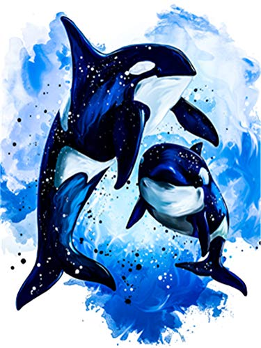 Killer Whale And Dog (Paint by Numbers Kit for Adults Beginner DIY Oil Painting 16x20 inch - Killer Whale, Drawing with Brushes Christmas Decor Decorations Gifts (Without)