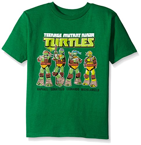 Teenage Mutant Ninja Turtles Little Boys' Group T-Shirt Shirt, Green Names, Small - 4 Turtle Green T-shirt