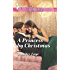 A Princess by Christmas (Twin Princes of Mirraccino)