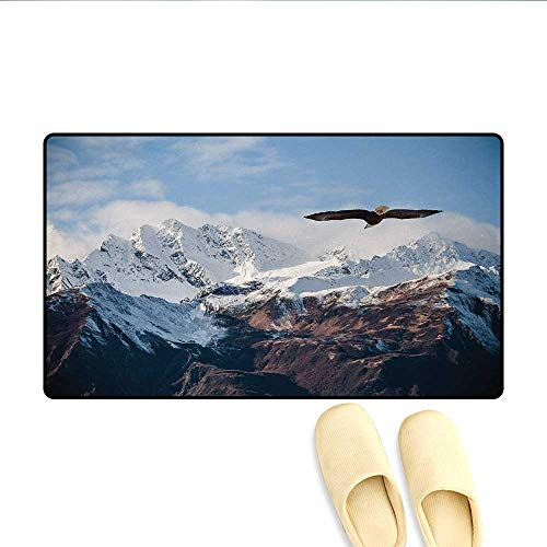 Bath Mat,Frozen Peaks Tops of The Mountain with a Flying Eagle Free in Nature Photo,Doormat Outside,Brown White Blue,Size:20