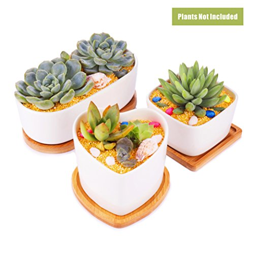 MagicBears 3 In Set Modern Minimalist White Ceramic 3.54 Inch Square/ 3.8 Inch Heart Shaped/ 6.7 Inch Oval Succulent Plant Pot/ Cactus Plant Pot With Bamboo Trays