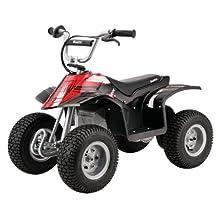 Razor 25143002 Dirt Quad-Black