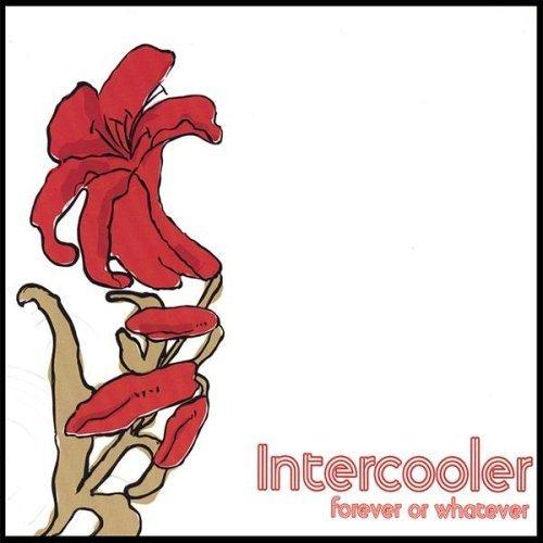 9 Intercooler - 2