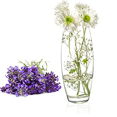 Clear Glass Flower Vase, Decorative Centerpiece for Home, Office, Event, Wedding (Style 5) -  - vases, kitchen-dining-room-decor, kitchen-dining-room - 51Y VRIZ0vL. SS400  -