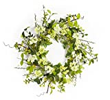 Pack of 2 Decorative Spring White and Green Artificial Blossom Wreath 25""