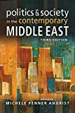 img - for Politics and Society in the Contemporary Middle East book / textbook / text book