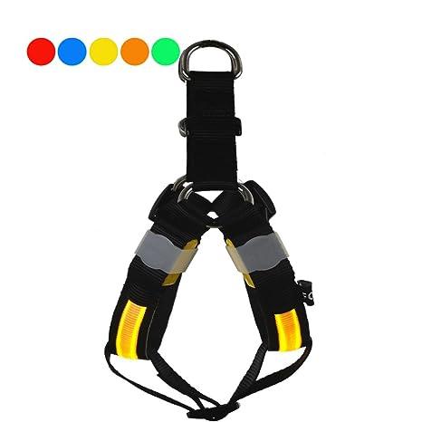 FONPOO FP5205 arnés para perro arnés de seguridad de LED con fibra ...