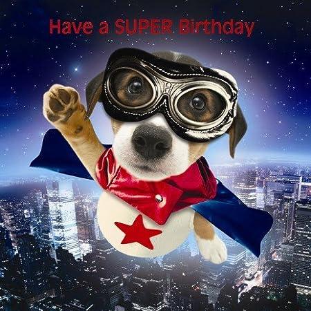 Jack Russell Puppy Birthday Card Super Pup Amazon Kitchen