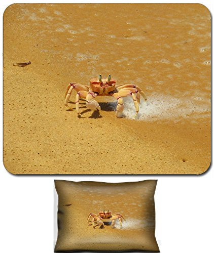 Liili Mouse Wrist Rest and Small Mousepad Set, 2pc Wrist Support IMAGE ID: 13642609 Crab on the beach on Bazaruto Island Mozambique (Mozambique Island)