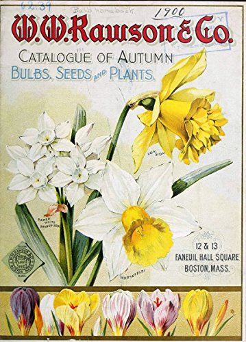 Flora Plant Bulb - Catalogue of autumn bulbs, seeds and small plants | Boston