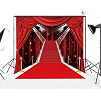 LB 12x12ft Red Carpet Vinyl Photography Backdrop Customized Photo Background Studio Prop VD442(Folded)