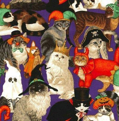 Cat Fabric - Halloween Costume Party - 100% Cotton - by The Yard -