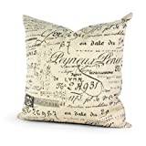 Decorative Pillow Cover - Lavievert Decorative Ramie Cotton Square Throw Pillow Cover Cushion Case Khaki Background Words Pattern Toss Pillowcase with Hidden Zipper Closure 20 X 20 Inches (For Living Room, Sofa, Etc)