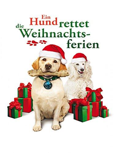 Ein Hund rettet die Weihnachtsferien Film