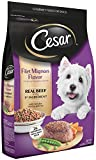 Cheap CESAR Filet Mignon Flavor With Spring Vegetables Dry Small Breed Dog Food; 100% Nutritionally Complete & Balanced for all life stages for small dogs