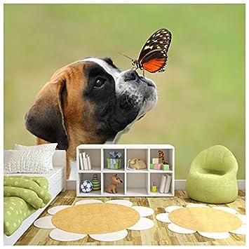 . Amazon com  azutura Boxer Puppy Dog Wall Mural Butterfly Photo