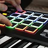Akai Professional MPK249 | 49 Key Semi Weighted USB MIDI Keyboard Controller Including Core Control From The MPC Workstations