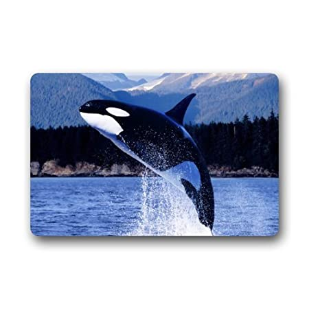 51Y05xbXlXL._SS450_ Whale Rugs and Whale Area Rugs