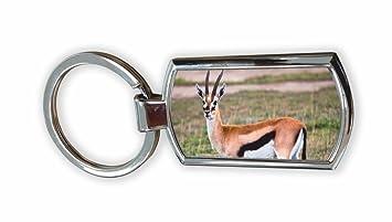 The Lazy Cow Gazelle Porte-clés chromé (dans une boîte de présentation d'