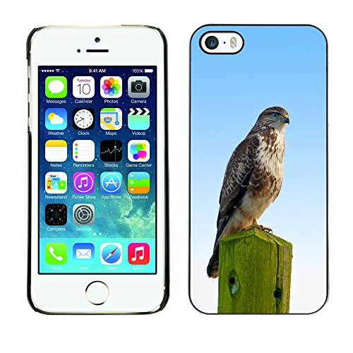 Premio Sottile Slim Cassa Custodia Case Cover Shell // F00012730 oiseau // Apple iPhone 5 5S 5G