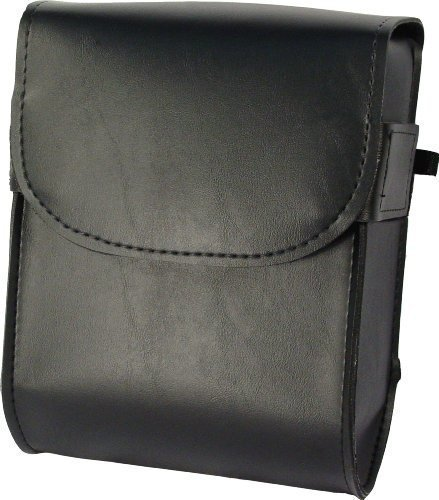 Willie & Max by Dowco 58472-00 Raptor Series: Synthetic Leather Motorcycle Sissy Bar Bag, Black, Universal Fit, 6 Liter (Raptor Sissy Bar Bag)