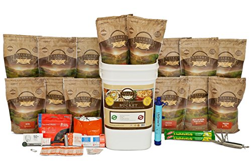 Valley Food Storage Emergency Preparedness Grab and Go Bucket Survival Kit (1 Week Supply for 4-People) by Valley Food Storage