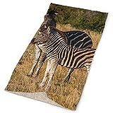 Headband Zebra Outdoor Scarf Mask Neck Gaiter Head Wrap Sweatband Sports Headwear