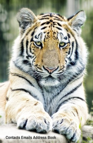Contacts Emails Address Book: Tigers Cover | Birthdays & Address Book for Contacts, Addresses, Phone Numbers, Email, Alphabetical Organizer Journal Notebook (Address Books)