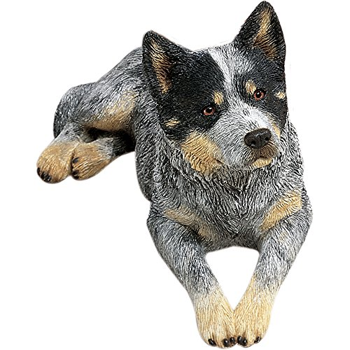 Sandicast Original Size Australian Cattle Dog Sculpture, Lying, Blue
