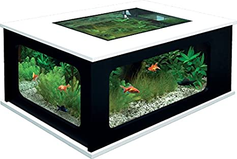 aquatlantis aquatable 63 025/001 Acuario mesa, negro de color blanco: Amazon.es: Productos para mascotas